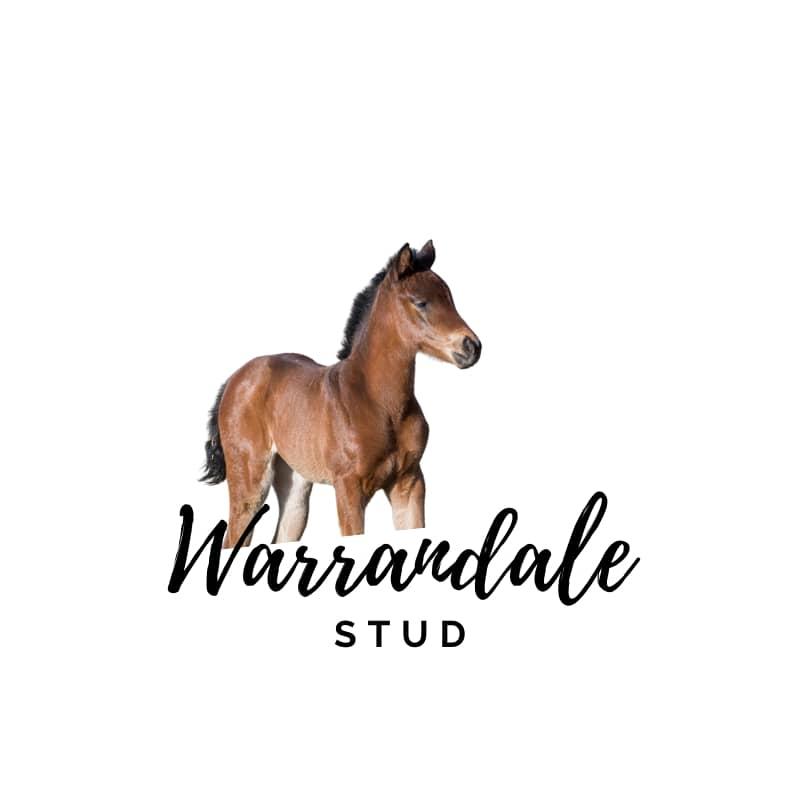 Warrandale Stud